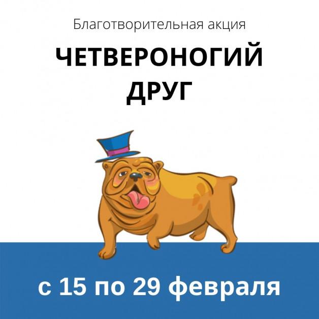 """Нижегородский """"Оксфорд"""" собирает помощь животным"""
